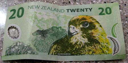 Dollari Nuova Zelanda