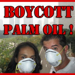 Boicotta l'Olio di Palma !